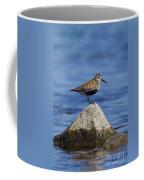 121213p019 Coffee Mug