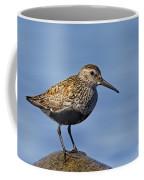 121213p022 Coffee Mug