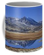 121213p099 Coffee Mug