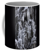 121213p146 Coffee Mug