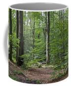 121213p305 Coffee Mug