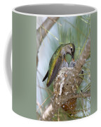 Annas Hummingbird Coffee Mug