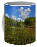 13- Florida Everglades Coffee Mug