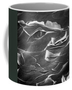 Sem Of Human Skin Coffee Mug