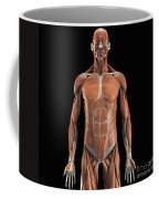 The Muscle System Coffee Mug