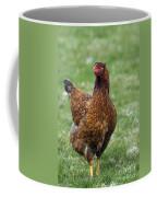 130109p189 Coffee Mug