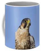 130201p040 Coffee Mug