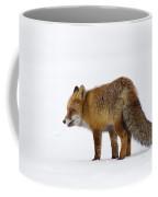 130201p056 Coffee Mug