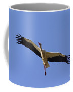 130201p265 Coffee Mug