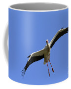 130201p267 Coffee Mug