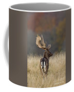130201p288 Coffee Mug