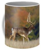 130201p289 Coffee Mug