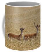 130201p299 Coffee Mug