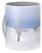 130201p322 Coffee Mug