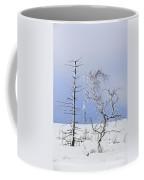 130201p331 Coffee Mug