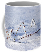 130201p362 Coffee Mug