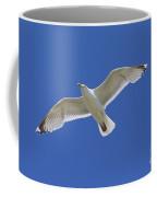 130215p213 Coffee Mug