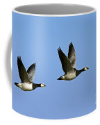 130215p250 Coffee Mug