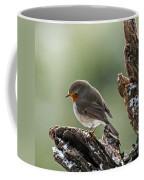 130215p300 Coffee Mug