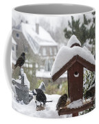 130215p304 Coffee Mug