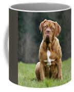 130318p082 Coffee Mug