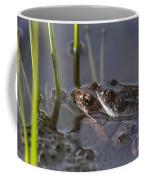 130318p140 Coffee Mug