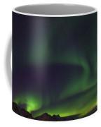 130901p174 Coffee Mug