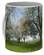 130901p216 Coffee Mug