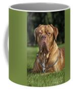 130918p004 Coffee Mug