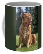 130918p005 Coffee Mug