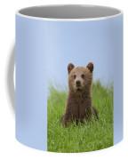 131018p242 Coffee Mug
