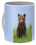 131018p243 Coffee Mug