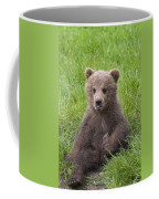 131018p247 Coffee Mug