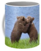 131018p256 Coffee Mug