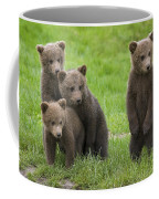 131018p260 Coffee Mug