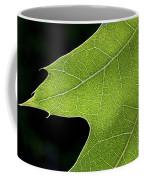 131114p195 Coffee Mug
