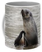 Antarctic Fur Seal Coffee Mug