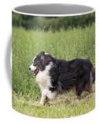 Australian Shepherd Dog Coffee Mug