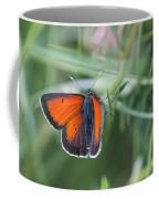 14 Balkan Copper Butterfly Coffee Mug