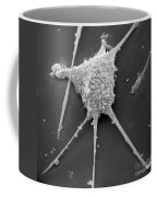 Mycoplasma Coffee Mug