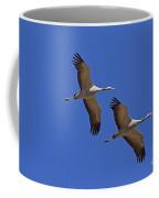140314p060 Coffee Mug