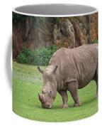 140420p172 Coffee Mug