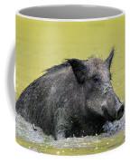 140530p337 Coffee Mug