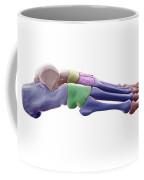 Foot Bones Coffee Mug