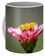 Zinnia From The Candy Mix Coffee Mug