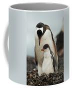 Gentoo Penguin With Young Coffee Mug