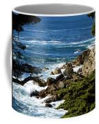 17 Mile Drive Detail Coffee Mug