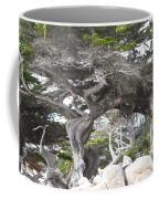 17 Mile Drive Tree Coffee Mug