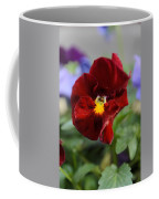 Viola Tricolor Heartsease Coffee Mug