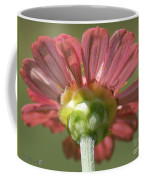 Zinnia From The Candy Mix Coffee Mug
